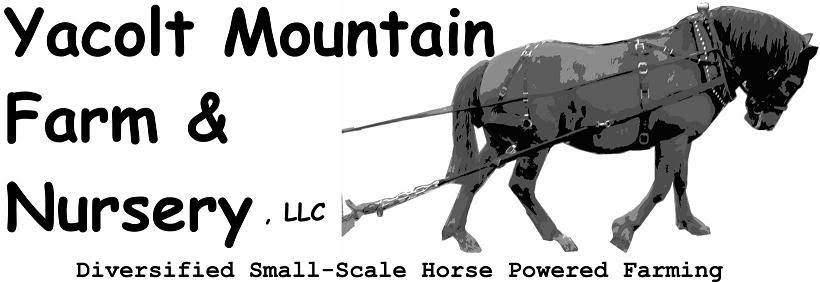 Yacolt Mountain Farm & Nursery logo